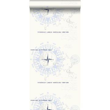wallpaper compasses light blue