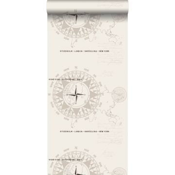 wallpaper compasses beige