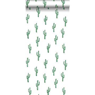 wallpaper small desert cactus emerald green