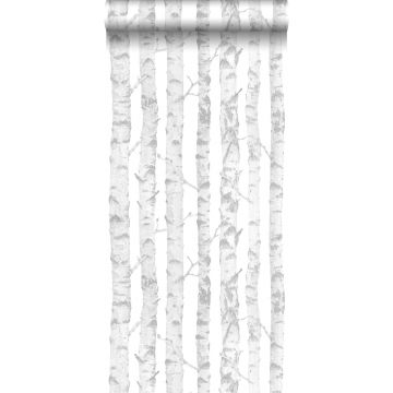 wallpaper birch trunks silver and white