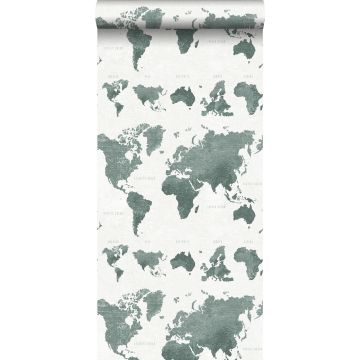 wallpaper vintage world maps grayish green