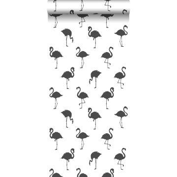 wallpaper flamingos black and white