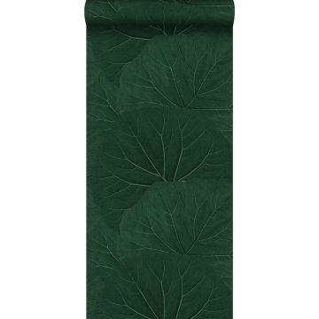 wallpaper large leaves emerald green