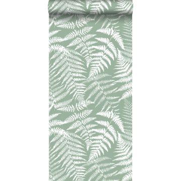 wallpaper ferns mint green