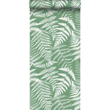 wallpaper ferns green