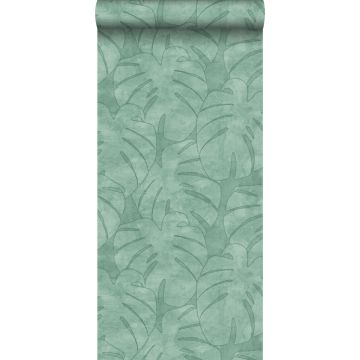 wallpaper monstera leaves mint green