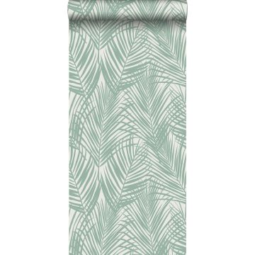 wallpaper palm leaves mint green
