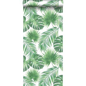 wallpaper tropical leaves green