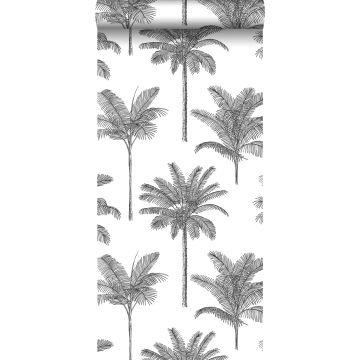 wallpaper palm trees black and white