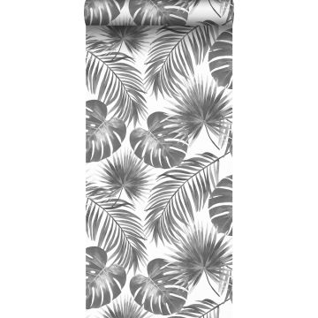 wallpaper tropical leaves black and white
