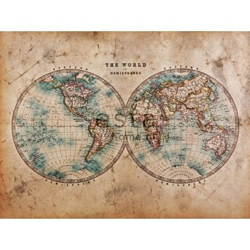wall mural map of the two hemispheres brown and blue-green