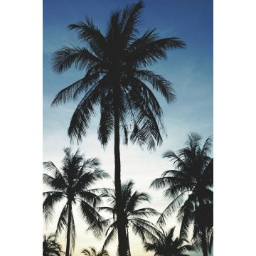 wall mural palm trees blue, black and beige