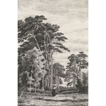 wall mural wooded landscape black and white