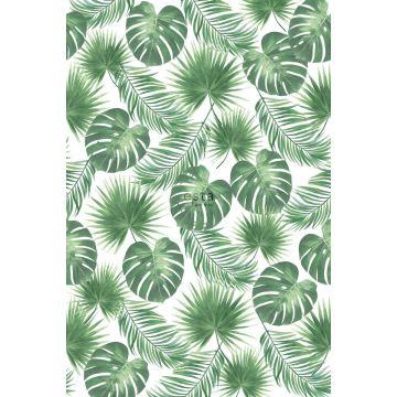 wall mural tropical leaves green