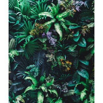 wall mural tropical plants green