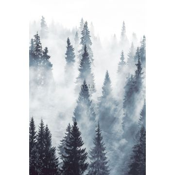 wall mural foggy forest green