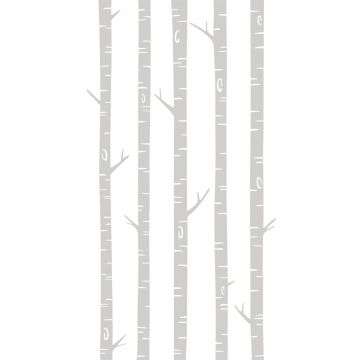 wall mural birch trunks gray