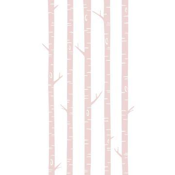 wall mural birch trunks soft pink