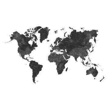 wall mural world map anthracite gray