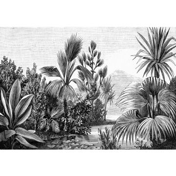 wall mural tropical landscape black and white