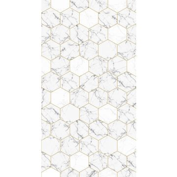 wall mural marble black and white and gold