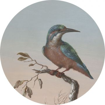 self-adhesive round wall mural kingfisher on branch evening red