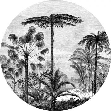 self-adhesive round wall mural tropical landscape with palm trees black and white