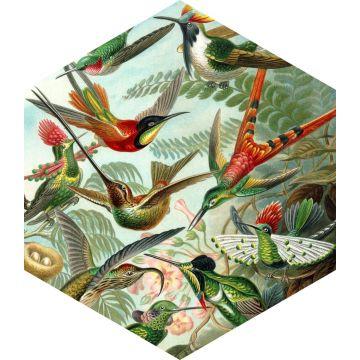 wall sticker birds tropical jungle green