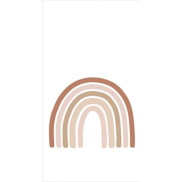 wall mural rainbow terracotta, soft pink and beige