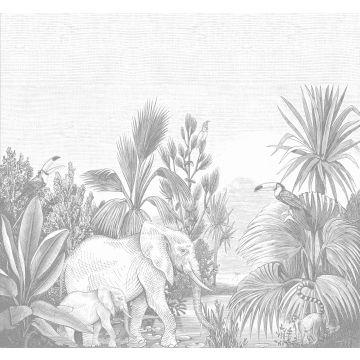 wall mural jungle gray