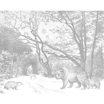 wall mural forest with forest animals gray